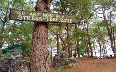 Mt Kalugong Eco Park: Complete 2020 Travel Guide