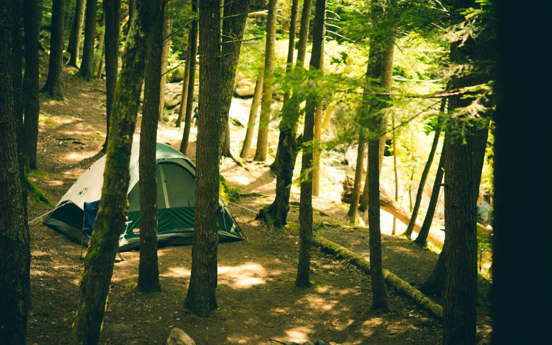 5 Camping Essentials to Level Up Your Camping Experience