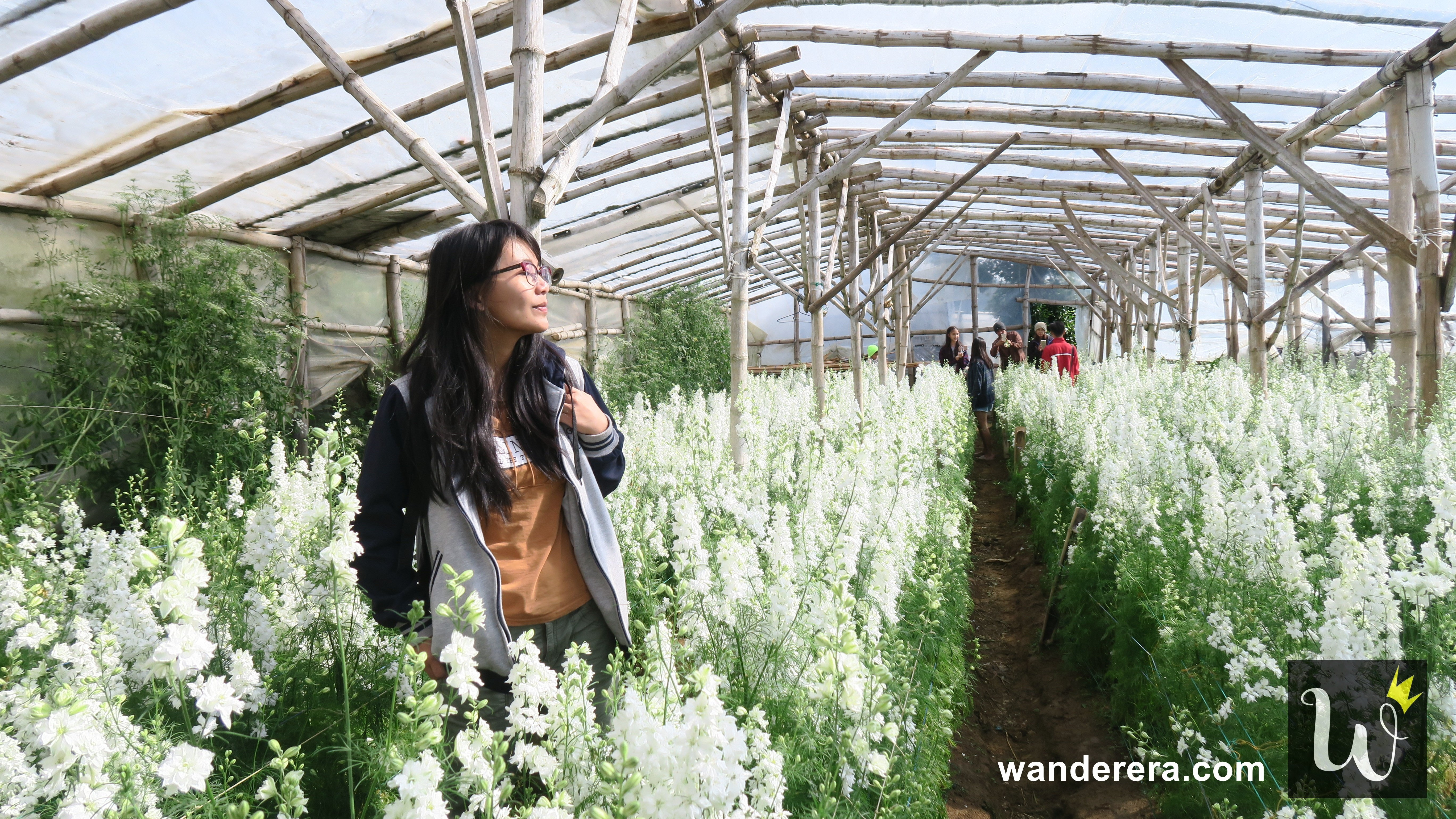 Northern Blossom Flower Farm