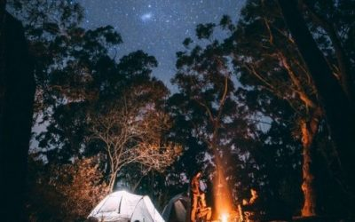 Camping Checklist: 20 Essentials To Bring
