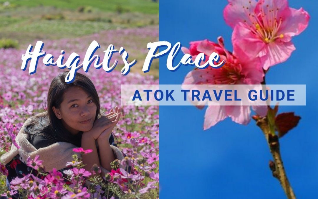 Haight's Place (Sakura Flowers) in Atok, Benguet: 2020 Ultimate Travel Guide
