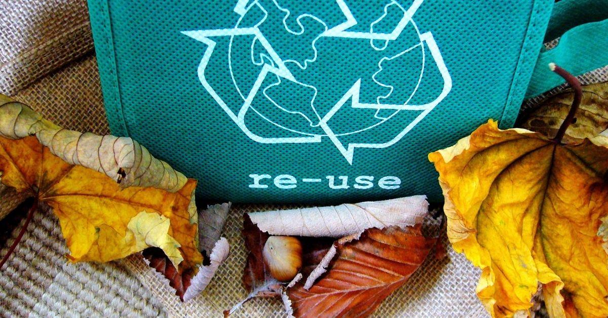 environmentally conscious trips