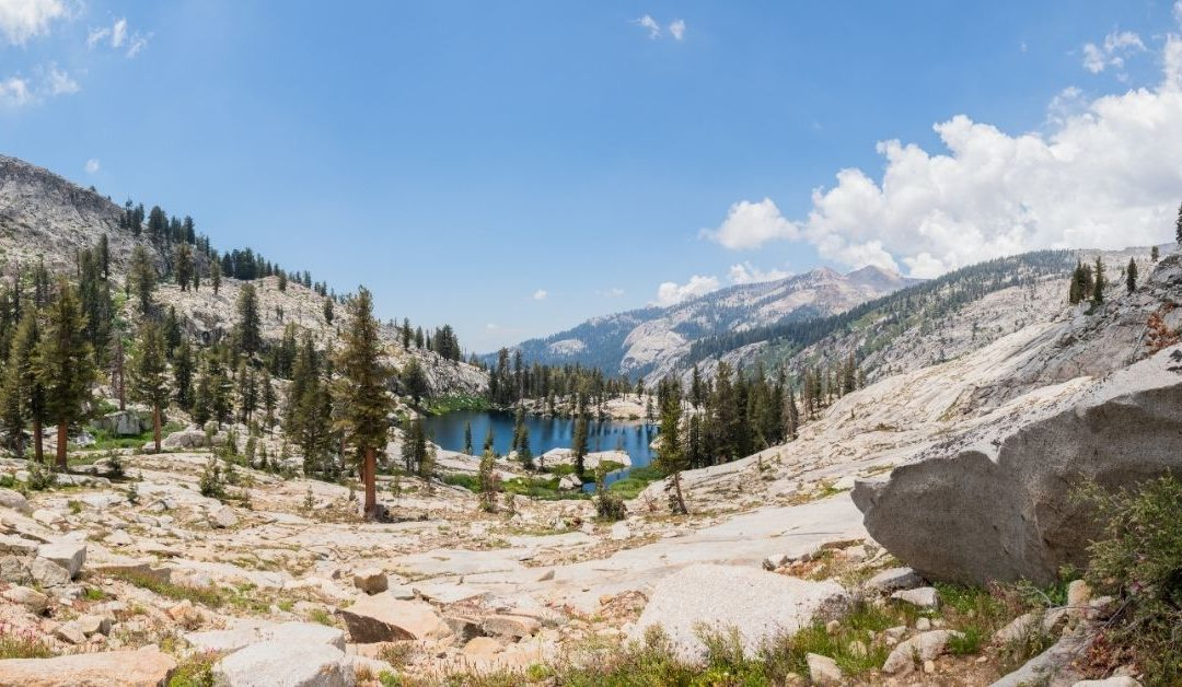 7 Things to Do in Sequoia National Park