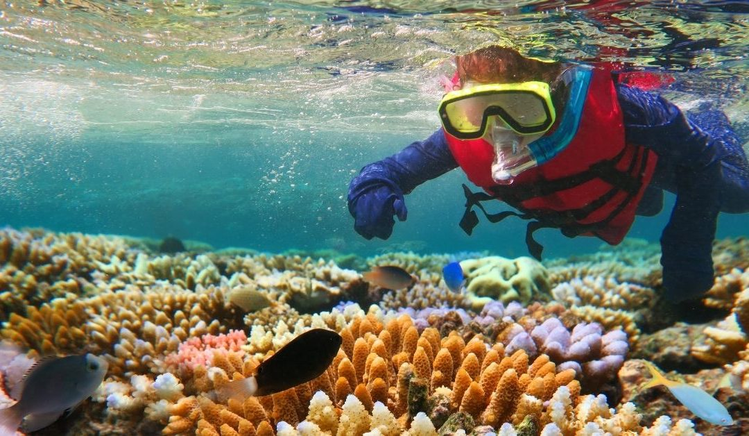 5 of the Best Snorkeling Spots Around Australia