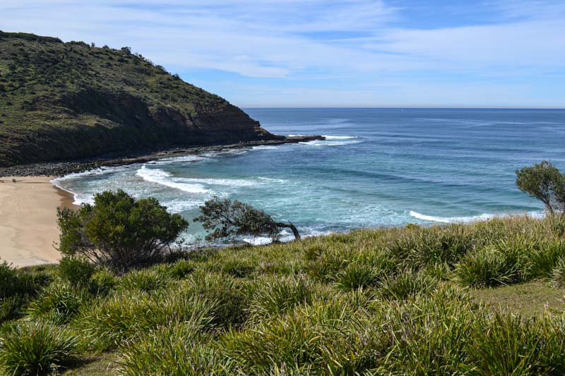 Best Hikes Near Sydney, NSW You Can't Miss