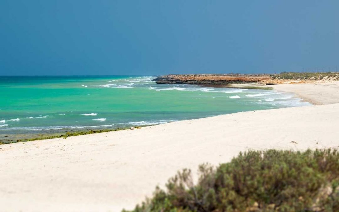 5 Best Beaches to Visit in Oman